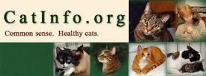 Gatos Verdade Revelada